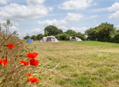 watercress-lodges-and-campsite-11